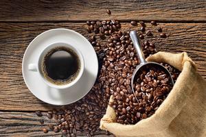 Tallahassee Coffee Festival