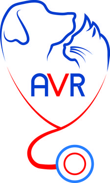 Ambulatorio Veterinario Rosso / Centro Cinofilo New Team Sporting logo