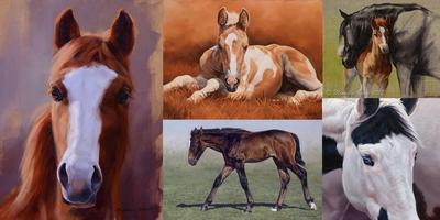Foaling Around With Oil Paint - Michelle Grant Workshop