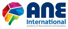 ANE International logo