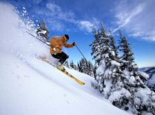 NY Ski & Snowboard Club logo
