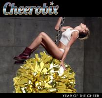 January 2014 Cheerobix Workshop - Year of the Cheer!
