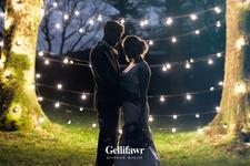 Gellifawr Woodland Retreat logo