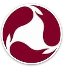 TAEGUK TEAM logo