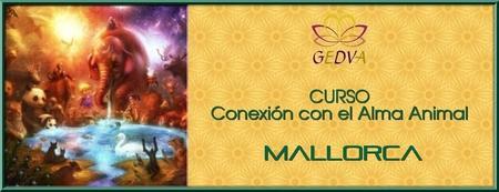 CURSO Conexión con el Alma Animal MALLORCA