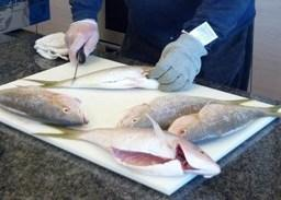 Cooking Class: School of Fish
