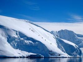 AmBAR Sport Event: Antarctica Ski Expedition. Lessons...