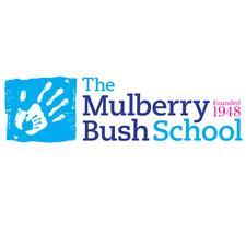 The Mulberry Bush School logo