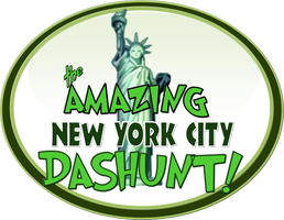CASHUNT PRESENTS THE NYC DASHUNT! The Ultimate New...