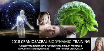 2-day Introduction to Craniosacral Biodynamics - in...