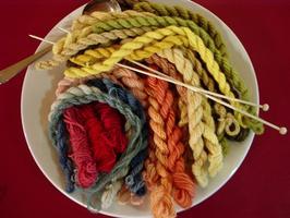 Workshop: Plant Dyes