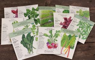 Workshop: Seed Sowing