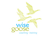 Wise Goose Limited  logo