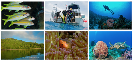 Diving Destinations & Specialties