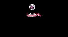 Ruta del Vino Mexicano en Puebla logo