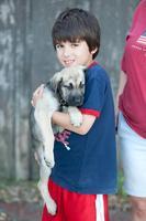 HSFM Kids Animal Club Meeting