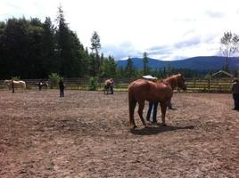 Equine Essentials Leadership Class