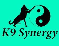 K9 Synergy  logo