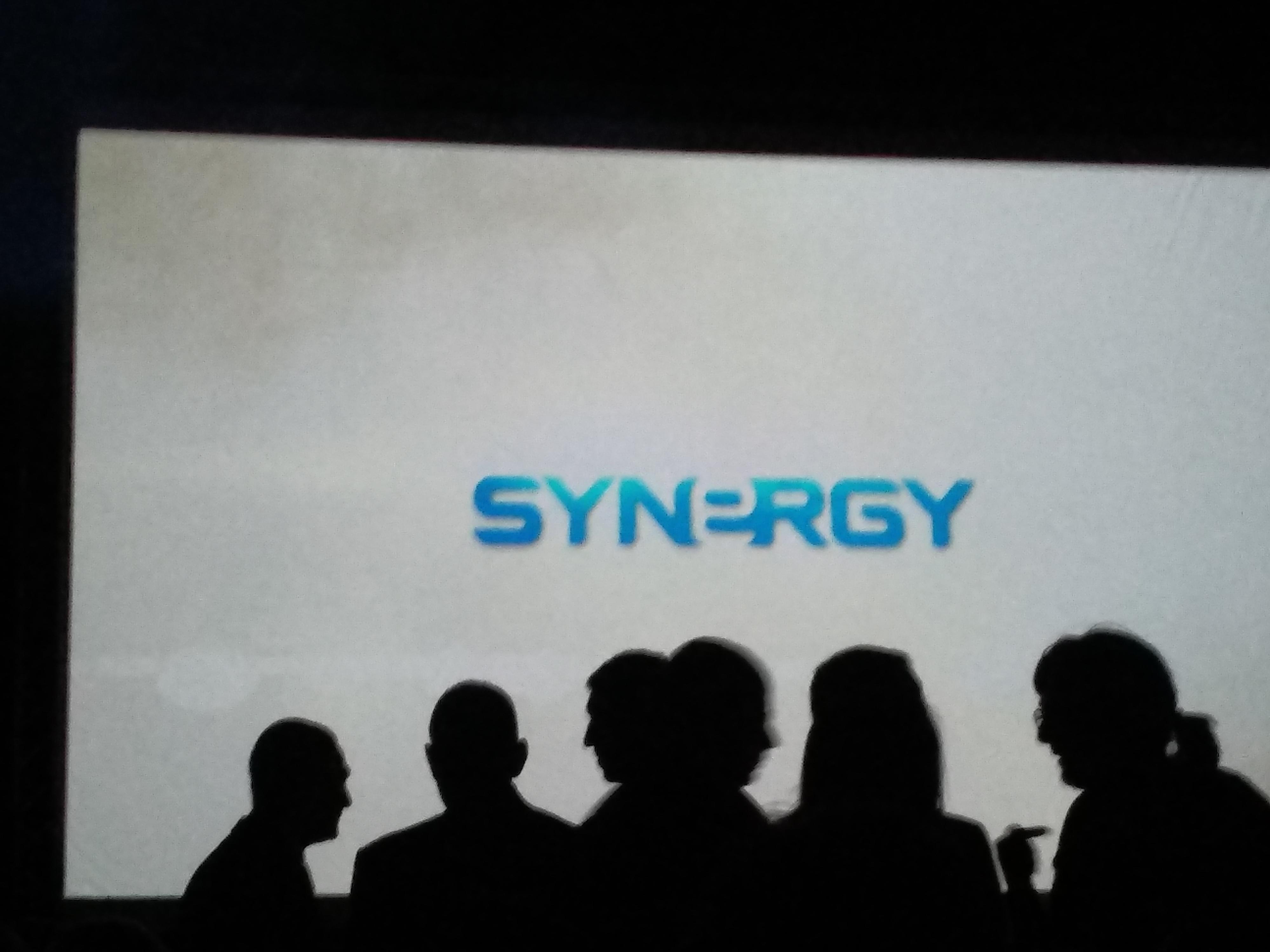 TW SYNERGY ESPAÑA logo