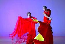 Carolina Lugo's & Carolé Acuña's Ballet  Flamenco   logo