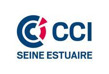 CCI VIKin_ logo