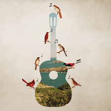 Mediterranean Guitar Festival logo