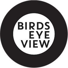 Birds Eye View logo