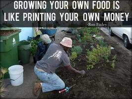 SPIN (Small plot intensive) Farming: Learn to grow...