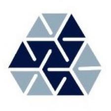BlockchainProjectsBV logo