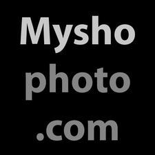 Myshophoto logo