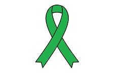 Scoliosis Awareness Walk Ottawa for CHEO logo
