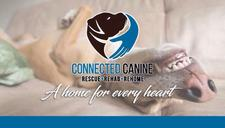 Connected Canine logo