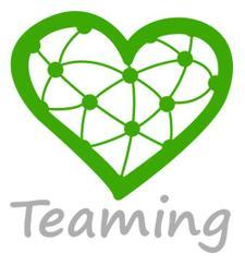 Fundación Teaming logo