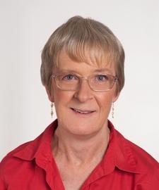 Diana Hutchison logo