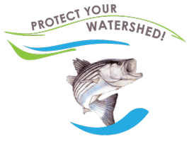 Discover Your Watershed