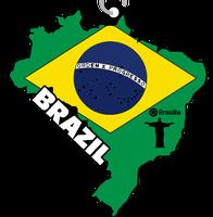 Race Across Brazil 5K, 10K, 13.1, 26.2 - Oakland