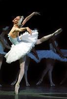 """Movie Screening: Documentary """"Ballerina"""""""