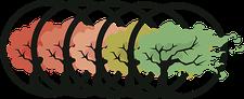 MOLLITIAM Consultoria LTDA ME logo