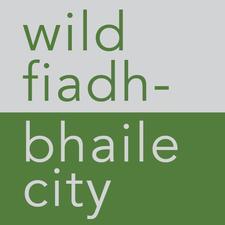 wild city | fiadh-bhaile logo