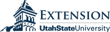 Raquel of Healthy Relationships Utah logo