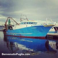 #Fishing #tour Ionian sea #Apulia | #Pesca turismo Mar...