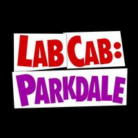 Lab Cab Presents: Viral videos 101: Creating...