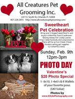 Sweetheart Pet Celebration Feb 9th