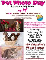 Pet Photo Day & Adoption Event Feb. 1st