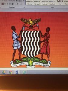 Zambia Ireland Association logo