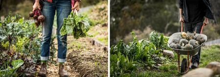 Real Skills for Growing Food
