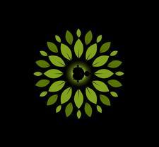 InnerOrigin logo