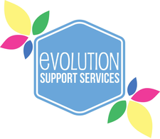 Evolution Support Services  logo
