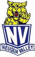 NVHS Class of '04 Reunion