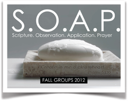 Oasis Fall Group: 11:30am Tue @ Whole Hog (WLR)...
